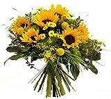 Sonnenschein | BESONDERER Blumenstrauß | SONNENBLUMEN | 1A QUALITÄT GÄRTNER | SONNENBLUMENSTRAUß Größe 35 Euro