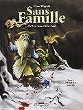 Sans Famille, Tome 4 : Neige et loups
