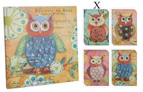Bild Design drollige Eule, Eulenbild, Keilrahmen Eule, türkis/blau (926)