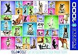 Eurographics 6000–2.423,2cm yoga Dogs puzzle (pezzi)