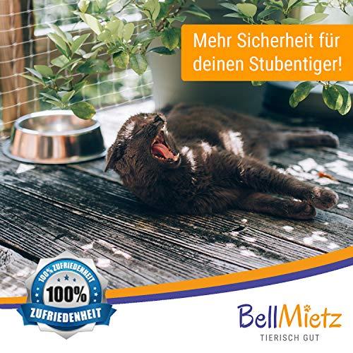 BellMietz Katzennetz für Balkon und Fenster | Extragroßes 8x3m Katzen-Schutznetz | Inkl. 25m Befestigungsseil | Balkonnetz mit Gratis Ebook - 5