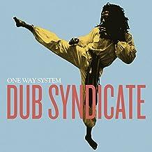 One Way System (Gatefold 2lp+Mp3) [Vinyl LP]