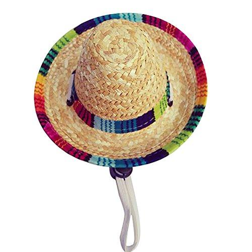 Godagoda Haustier Hut Persönlich Kostüm Cosplay Kleidung Deko Zubehör Sonnenschutz für Katze Hund