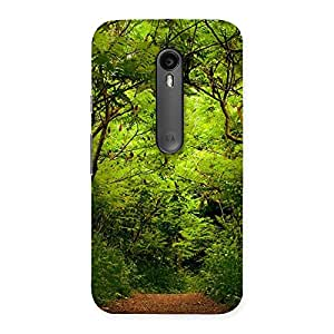 Neo World Dense Forest Back Case Cover for Moto G Turbo