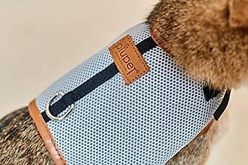PiuPet Premium Harnais Chat de Laisse de Chat de 1,20 m | Parure pour Chat sûre | Collier pour Chaton | Taille M