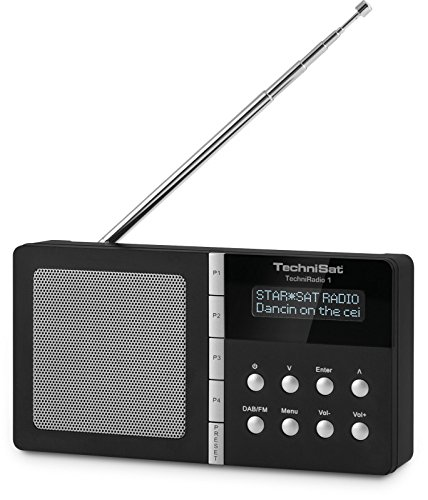 TechniSat TechniRadio 1 tragbares Digitalradio