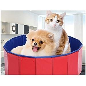 Vasca per cani e gatti/Vasca per animali domestici, Piscina per cani pieghevole, Vasca per animali domestici di bellezza/Vasca grande per cani/Lavabo per cani, Pieghevole veloce (M)