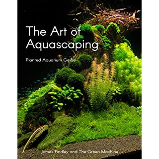 The Art of Aquascaping - Planted Aquarium Guide