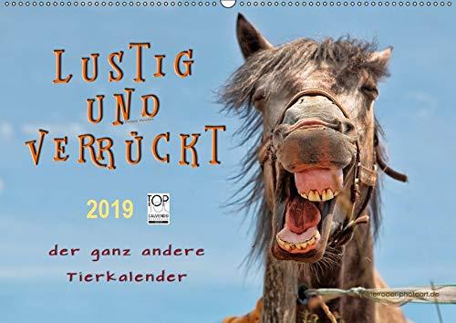 Lustig und verrückt - der ganz andere Tierkalender (Wandkalender 2019 DIN A2 quer): Schöne Tierbilder, die Freude machen. (Monatskalender, 14 Seiten ) (CALVENDO Tiere) -