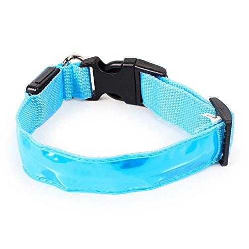 Haustierkragen für Haustier Safe, Das Funkeln der Nacht bringt EIN Gefühl der Sicherheit, Safe Seen (Blue-M)