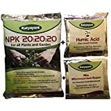 katyayani Water Soluble NPK 20 20 20 Fertilizer Complete Plant Food for Plants (500 g) with 2 Sample -Mix micronutrients and Organic Humic Acid