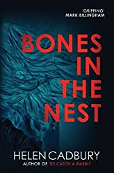 Bones in the Nest (The Sean Denton Series)
