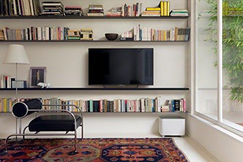 Sony KD-49X8305C 49 inch Smart 4K UltraHD TV (Android TV, 4K Processor X1, 4K X-Reality Pro) – Black