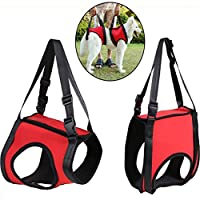 Da Jia Inc Dog Lift Rehabilitation Support Harness Assist for Elderly Disable Joints Surgery(Red,37-45Kg)