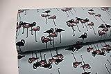Stoff / Meterware / ab 25cm / beste Jersey-Qualität / Jersey Flamingos groß auf mint