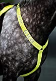 Equi-Flector Breastplate - Bright Yellow