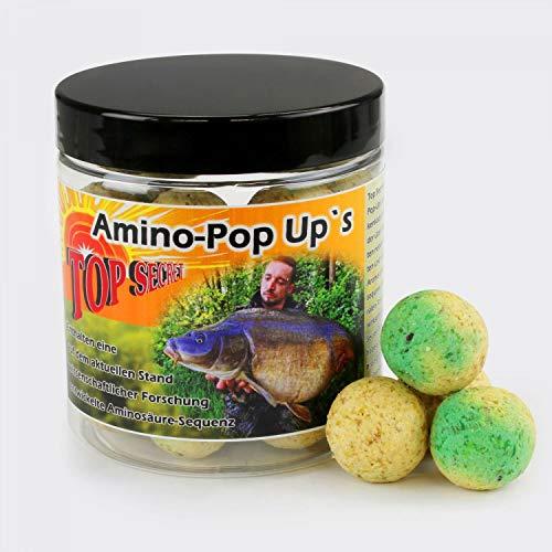 Top SecretCarp Dream Pop Up Boilies 20mm Knoblauch/Fisch 100g -