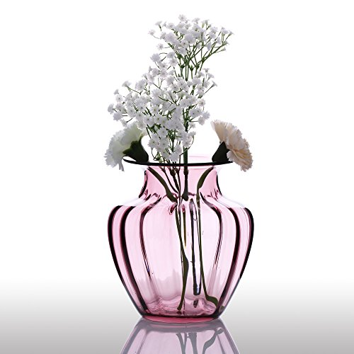Anself CASAMOTION mano moderno Vaso soffiato a forma di accordi di vetro Vaso coste della casa di disegno della decorazione di arte floreale