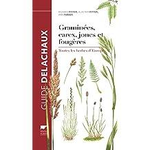 Graminées, carex, joncs et fougères. Toutes les herbes d'Europe