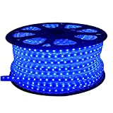 #10: DMT 100 Meters LEDs - Blue Color - Flat Square Rope Light - Spool - Clear Tubing with (Blue) LED- Ceiling Light Focus Pure Cool Blue ('IP65 ' Water Resistant)