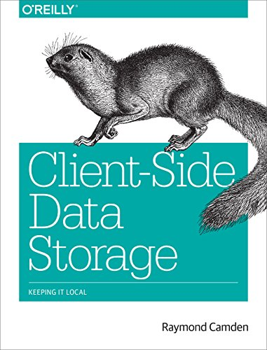 Client-Side Data Storage: Keeping It Local (English Edition) Camden Server