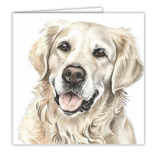 Golden Retriever Hund Geschenk–Qualität Grüße Karte mit gratis Auto-Lufterfrischer