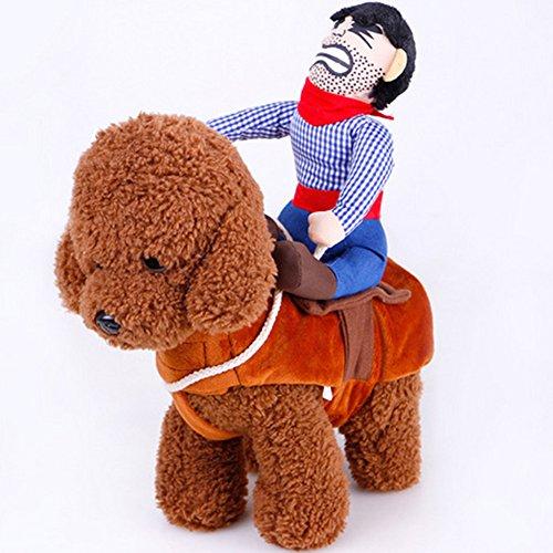Neuheit Funny Cowboy Verkleidungen Rider Jacke Coat Halloween Hunde Kostüm