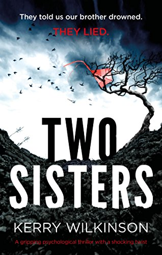 two-sisters-a-gripping-psychological-thriller-with-a-shocking-twist