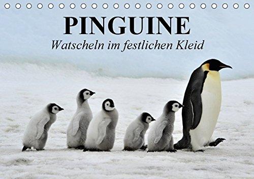 Pinguine - Watscheln im festlichen Kleid (Tischkalender 2018 DIN A5 quer): Königspinguine in ihrem natürlichen Lebensraum (Monatskalender, 14 Seiten ) ... [Kalender] [Apr 01, 2017] Stanzer, Elisabeth