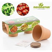 Kit cultivo, kit huerto urbano niños de 2 mini macetas de Tomate y Rúcula, con mini macetas de barro, semillas, tierra e instrucciones para su plantación. Ideal para guarnición de pizzas