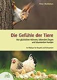 ISBN 9783895663642