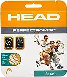 Head Perfect Power Seil für Tennisschläger