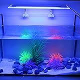 Tomshine acquario luce SMD5050 ultra sottile RGB LED multi colore cambiando con IR 24 tasti telecomando Flash Strobe Fade effetto visivo liscio per il serbatoio