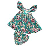 MIOIM MIOIM Toddler Infant Baby Girls Summer Ruffled Floral Tutu Dress Sundress Briefs 2PCS Outfits Set