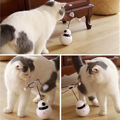 Destinely Katze Spielzeug 3-in-1 Interaktive Katze Spielzeug mit lustiges Katzenlicht,360 ° -Drehung,sphärischer Becher KatzenSpielzeug Elektrisch Ball Interaktive Feather Tumbler Katzenspielzeug