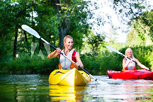 druck-shop24 Wunschmotiv: Freunde paddeln im Kanu auf Wald Fluss #87610456 - Bild auf Alu-Dibond - 3:2-60 x 40 cm / 40 x 60 cm -