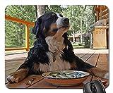 Gaming-Mauspads, Mäusematte, Berner Sennenhund sitzender wartender Naturhund