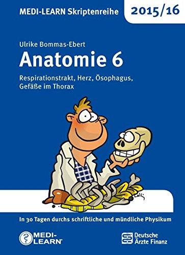 MEDI-LEARN Skriptenreihe 2015/16: Anatomie 6 - Respirationstrakt, Herz, Ösophagus, Gefäße im Thorax