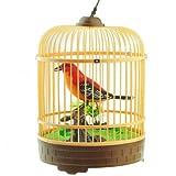 #5: HPK AMAZING SINGING CHARMING TALKING BIRD IN CAGE
