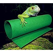 Wear-Beauty - Revestimiento de alfombra verde, repele tortugas de serpiente, lagartos de terrario, tortugas de serpiente, tumbona de ángeles de dragones y arañas de geckos iguanas hermit crabs insectos de rana