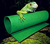wear-beauty verde tappeto antiscivolo rettili serpenti Turtles Lucertole terrario serpenti Lucertole lettini Anoles Bearded Dragons ragni Geckos Iguanas Hermit Crabs rana insetti