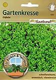 Gartenkresse einfache Saatband für Balkon & Terrasse schnellwachsend aromatisch vitamninreich 43920