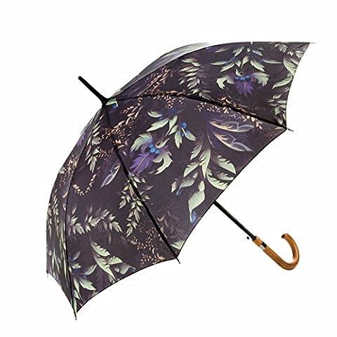 Der fabelhafte Regenschirm