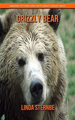 Grizzly Bear Tier - Grizzly bear: Amazing Pictures and Facts
