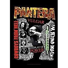 Pantera–Cowboys from claro–Póster Bandera–100% poliéster–Tamaño 75x 110cm