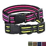 Mile High Life Night Reflektierende Doppelstreifen Nylon Hundehalsband (2 Pack Kalk/Helles Rosa, Mittlerer Hals 35.5cm - 48cm -18kg)