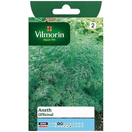 Vilmorin - Sachet graines Aneth Officinal
