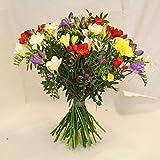 bunter Blumenstrauß Frühling mit frischen Freesien *Blütenduft' die blumen versenden wir mit wenig BeiwerkSize 30 Euro