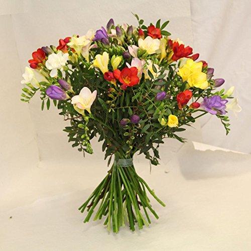 Frühlings-frischen Duft (bunter Blumenstrauß Frühling mit frischen Freesien *Blütenduft' die blumen versenden wir mit wenig BeiwerkSize 30 Euro)