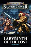 Labyrinth of the Lost (Warhammer Quest Silver Tower) (English Edition)